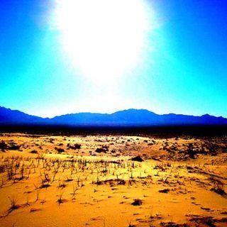 THE DESERT SHOW 1