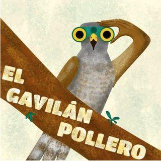 El Gavilán Pollero