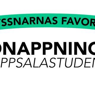 Kidnappningen av Uppsalastudenten