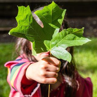 Gaia Nanni legge 4 libri sull'ambiente e il futuro