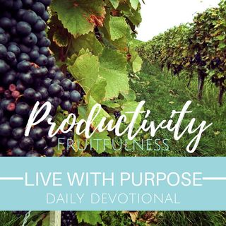 #029 Productivity. Fruitfulness.