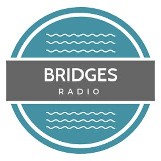 Bridges Podcast Shawn Anthony Episode 19