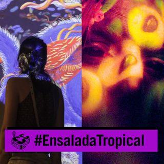 Ellas hacen ruido: mujeres en la música experimental (ENSALADA TROPICAL - CARNE CRUDA #935)