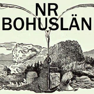 NR Bohuslän #14: Politikerligor, inbrottsligor, zigenarligor & homofilkollo!