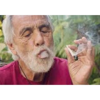 Dave's Not Here-Tommy Chong Is