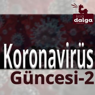 Koronavirüs güncesi - 2