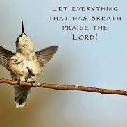 5 Min Parable: Have breath? Praise Him!