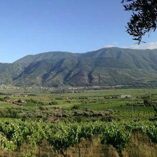 Borgo Campello - 5 agosto