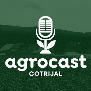 AgroCast Cotrijal