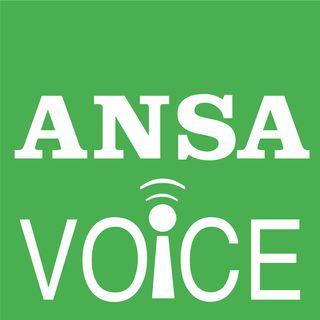 ANSA Voice