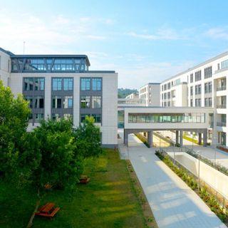 Türk-Alman Üniversitesi ve Hazırlık Okumak