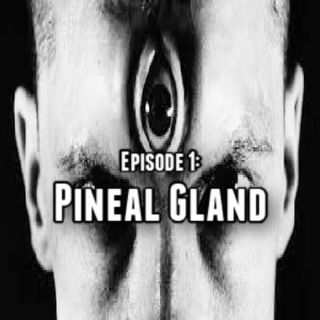 Episode 1: Pineal Gland