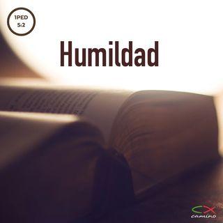 Oración 2 de julio (Humildad)
