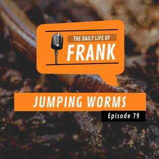 Episode 79 - Jumping Worms