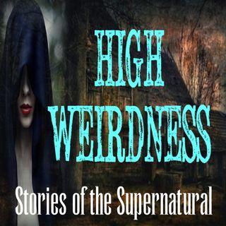 High Weirdness | Interview with Bill Bean | Podcast