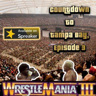 Countdown To Tampa Bay, Episode Three: WRESTLEMANIA 3