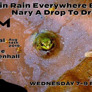 'RAIN RAIN EVERYWHERE AND NARY A DROP OF WATER' W/ CHANCE MENDENHALL-Aug 14th 2019
