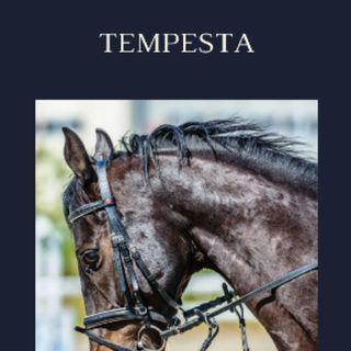 TEMPESTA 3/6  Part.
