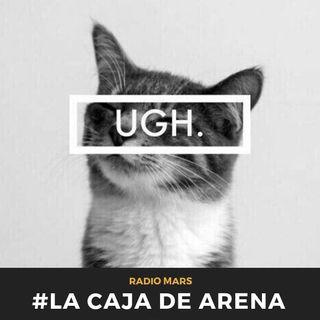 La Caja De Arena #30 - Milhouseeee