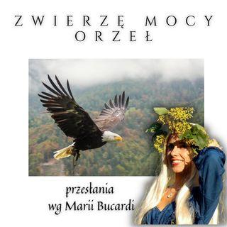 Zwierzę Mocy - Orzeł - Słuchowisko Marii Bucardi