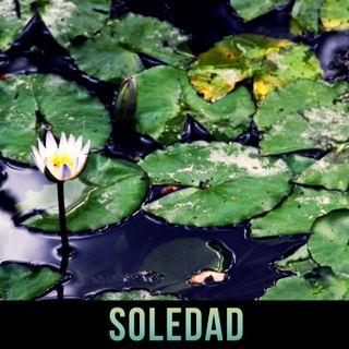 Episodio 3: Soledad