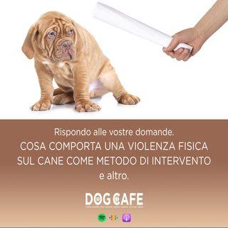 #066 - Q&a cosa comporta una violenza fisica sul cane come metodo di intervento e altro.