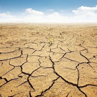 È vero che non tutti gli scienziati sono d'accordo sui cambiamenti climatici?