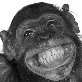 Tipos de sonrisas