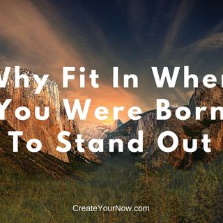 1156 Why Fit In When You Were Born To Stand Out