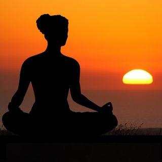 Diotima e la tartaruga - Meditazione e scrittura per non sprecare energia
