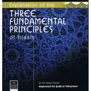3 Fundamental Principles