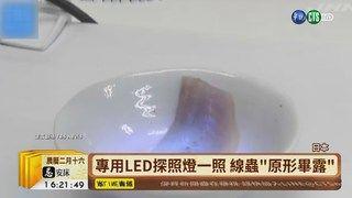 17:12 【台語新聞】不怕線蟲吃下肚 日研發專用LED探照燈 ( 2019-03-22 )