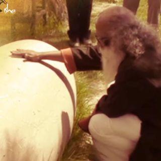 Sadhguru Discovers an Ancient Linga in Turkey, Rumi's Mausoleum