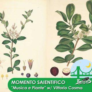 Momento Saientifico - Musica e botanica W/ Vittorio Cosma