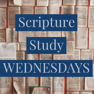 EP 40 - Scripture Journal Special ft. the FLU - SCRIPTURE STUDY  - Priceless.  Shara Ogilvie