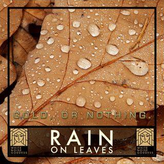 Rain On Leaves | White Noise | ASMR & Relaxation