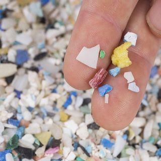 Nascondino: le microplastiche