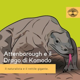 Attenborough e il Drago di Komodo - Impronta Animale
