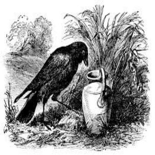 FFGF- The Crow & The Pitcher