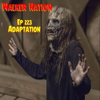 "Ep 223 ""Adaptation"" TWD 909"