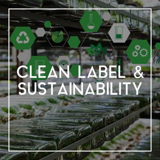 38 How Rich's Helps Define Clean Label and Sustainability