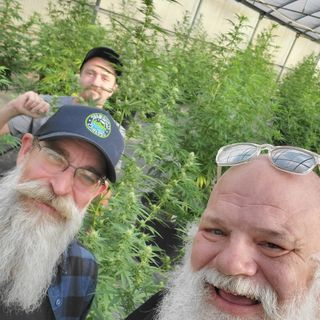 Interview with Hemp Farmers in Portland during The CSC (2019)