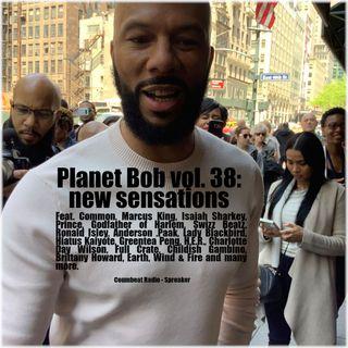 Planet Bob vol. 38: new sensations