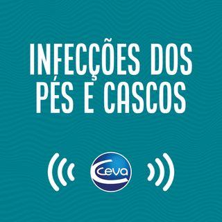 Pés e cascos #03 Prevenção das infecções dos pés e cascos nos bovinos