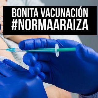 BONITA VACUNACIÓN
