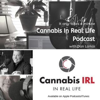 Cannabis In Real Life with Dan Larkin- Episode 21