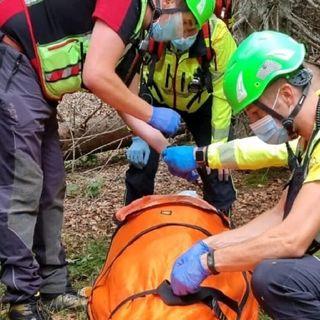 Boscaiolo colpito da un tronco durante lavori di pulizia degli schianti di Vaia