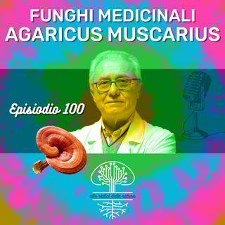 Funghi Medicinali: AGARICUS MUSCARIUS