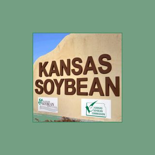 Kansas Soybean