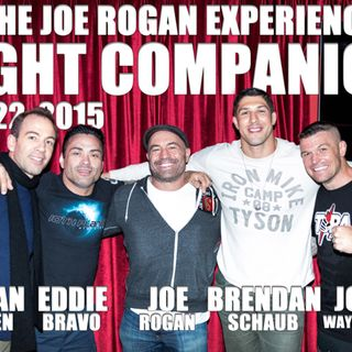 Fight Companion - Feb. 22, 2015